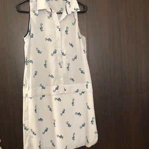 Dresses & Skirts - Zara dress